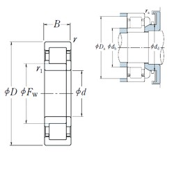 25 mm x 62 mm x 24 mm  NSK NUP2305 ET cylindrical roller bearings