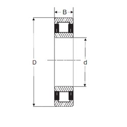 25 mm x 62 mm x 24 mm  SIGMA NU 2305 cylindrical roller bearings