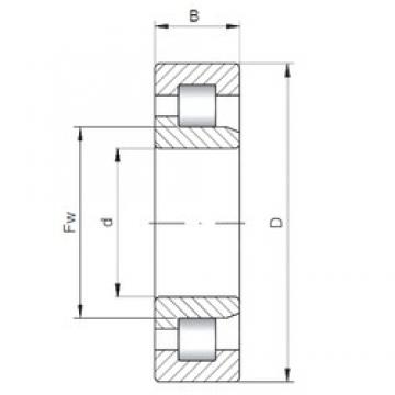 30 mm x 62 mm x 23,8 mm  ISO NJ3206 cylindrical roller bearings