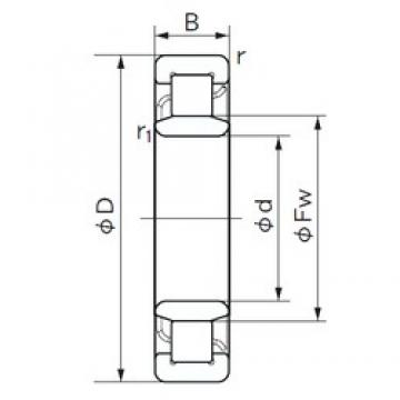 45 mm x 100 mm x 36 mm  NACHI NU 2309 cylindrical roller bearings