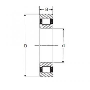 45 mm x 100 mm x 36 mm  SIGMA N 2309 cylindrical roller bearings