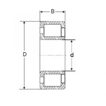 60 mm x 130 mm x 46 mm  SIGMA NJG 2312 VH cylindrical roller bearings