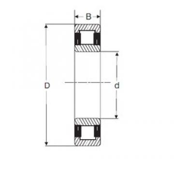 60 mm x 130 mm x 46 mm  SIGMA NU2312 cylindrical roller bearings